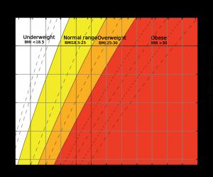 BMI-skalan