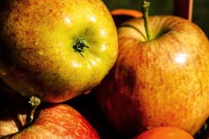 Goda och nyttiga äpplen. Bild från fotogrph.com.